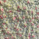 Blumenwand weiss-rosa